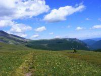 Горный Алтай: Алтай-2008 (55.98 Kb)