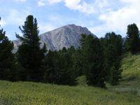Горный Алтай: Алтай-2008 (58.87 Kb)