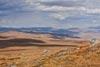 Западная часть плато Укок