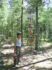 Горный Алтай: Актру 2008