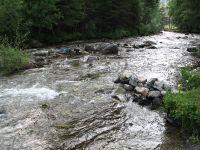 Горный Алтай: Река Большой Ильгумень (153.25 Kb)