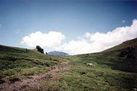 Горный Алтай: Перевал Орой (49.71 Kb)