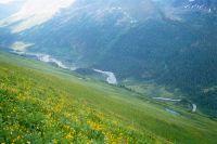 Горный Алтай: Река Белая Берель (60.15 Kb)