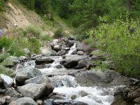 Горный Алтай: Река Ярлыамры (154.03 Kb)