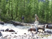 Горный Алтай: Река Актру пешеходный мост (150.35 Kb)