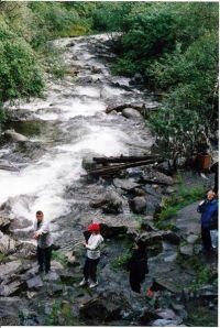 Горный Алтай: Река Корбу (78.62 Kb)