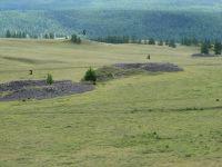 Горный Алтай: Пазырыкские курганы (237.2 Kb)