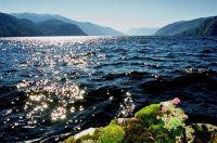 Телецкое озеро (131.63 Kb)