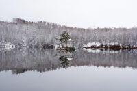 Горный Алтай: Змеиный остров на озере Ая (132.6 Kb)