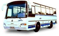 Автобус КаВЗ 4235-02 Аврора (7.71 Kb)